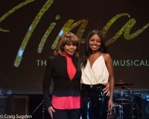 3. Tina Turner, Adrienne Warren